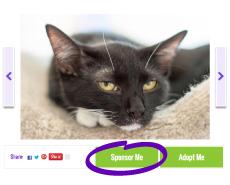Petfinder Foundation Sponsor A Pet button