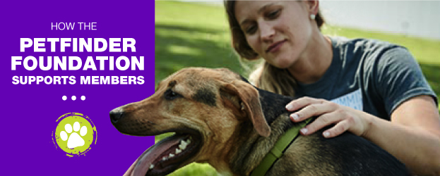 animal shelter grants  Petfinder Foundation support Petfinder members