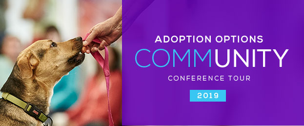 Adoption Options Conference Tour 2019