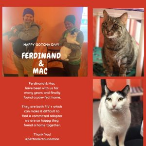 Nevada SPCA Purina New Year New Home Grant Ferdinand Mac