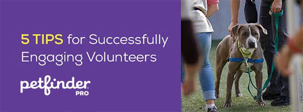5 Tips for Engaging Volunteers header image volunteer walking dog