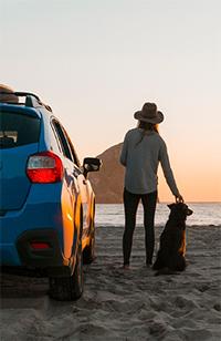 Summer heat risk woman and dog near car
