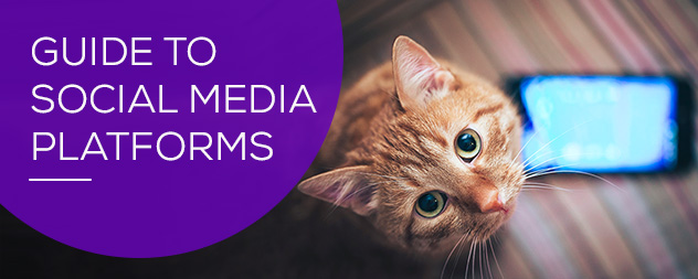 Picking the Right Social Media Platforms