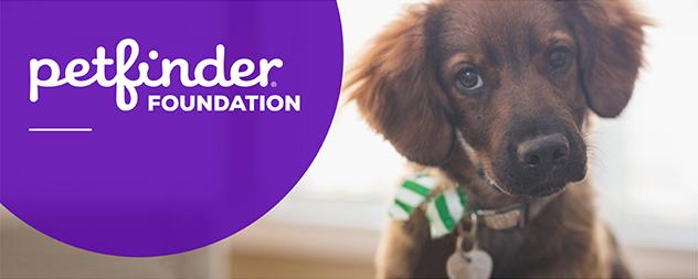 Petfinder Foundation