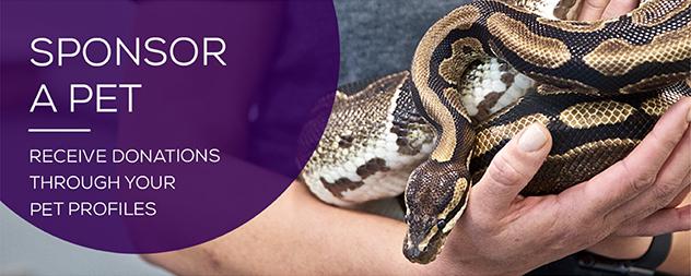 Petfinder Sponsor A Pet